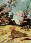 charles knight burgess shale painting wonderful life stephen gould anomalocaris